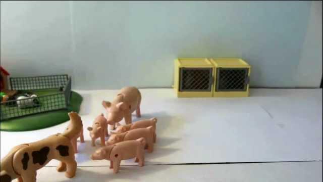 Hamilcar - Un tour de cochons